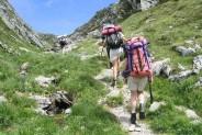 Cinq parcs où pratiquer la randonnée